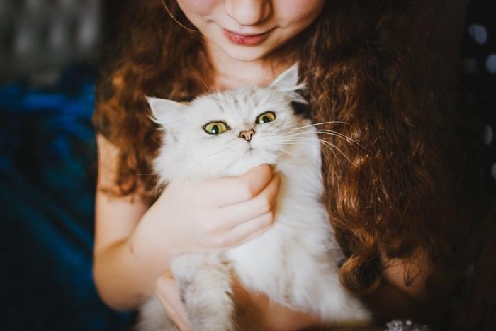 てまりのおうちとてまりのおしろは10歳以上、きゃりこ吉祥寺店は年齢制限はありません。小さい子供は猫の可愛さのあまり、ついつい無理にだっこしたりしっぽを引っ張ってしまったりするもの。そうしたトラブルを避けるために、年齢を制限されているお店があります。