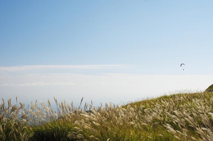 山頂から見下ろす一面に広がるススキは、忘れられません。
