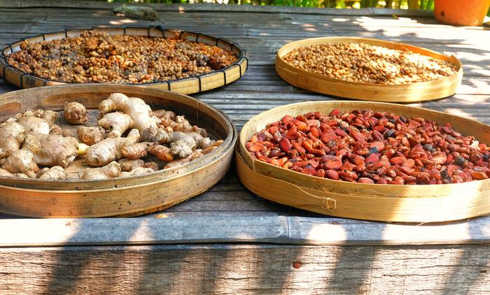 そしてあまり知られていませんが、インドネシアは天然香辛料の宝庫。ニンニク、ショウガ、唐辛子の他、ウコンやガランガーといった貴重なもの、さらにインドネシア料理に欠かせないココナッツやピーナッツまで、料理に使い放題!