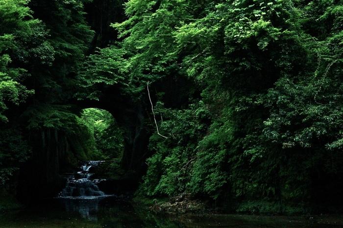 千葉県は君津市にある濃溝の滝。 人工的に作られた滝にも関わらず、神秘的な空気に圧倒されます。
