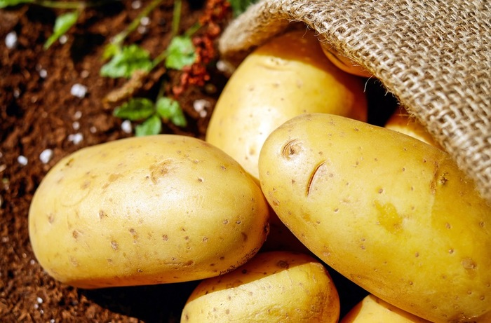 茹でたり、焼いたり、マッシュにしたりと多様に活躍するジャガイモ。お値段が安く、ボリュームUPにも一役買ってくれる嬉しい食材です。