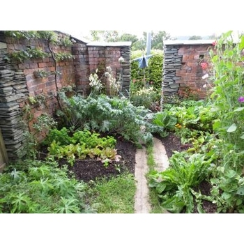 ピーターラビットが農場の野菜を食べてマクレガーさんに捕まる名シーンの光景を再現した庭園。ガーデニング好きの人にはたまらない可愛らしさです。