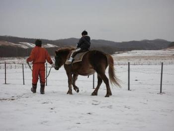 乗っているうちに、その馬のリズムや性格・くせなどがわかってくるそうです。それもまた楽しいですね。乗馬は、有酸素運動。体にも良さそうです。