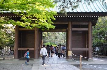 鎌倉三十三観音霊場・第23番札所「大異山高徳院清浄泉寺」。石畳の向こうに見えるのは「仁王門」。「仁王門」をくぐると、御本尊と対面できます。