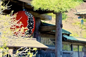 長谷寺(はせでら)の正式名称は「海光山慈照院長谷寺」。浄土宗系統の単立寺院です。「長谷観音」と呼ばれ親しまれています。
