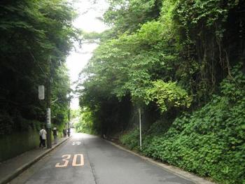 「成就院」から「極楽寺」へと通じる「極楽寺坂切通し」。