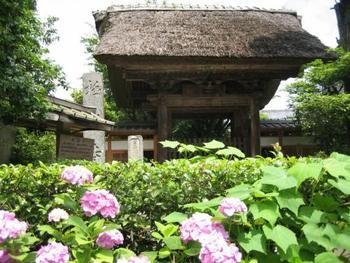 山間の静かな古刹「極楽寺」は、鎌倉唯一の真言律宗の寺院。