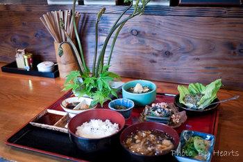 「夢ワラビ定食」 巨大な生のワラビが剣山に刺さって出てきます。 この活けてあるわらびに、野菜スティックのように味噌や醤油、マヨネーズなどの調味料をつけていただきます。