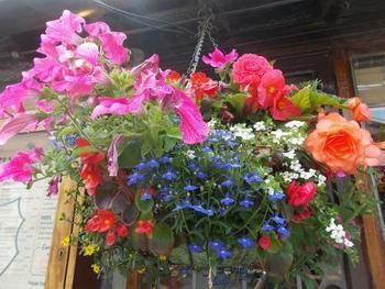 春の季節は、パブやお店など街の至る所にお花が飾られ、色鮮やかな街並みに。