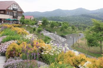 札幌から車で約50分、夕張郡由仁町にある総面積14ヘクタールの国内最大級の広さを誇る本格英国風ガーデンです。  春は、グローリーオブザスノー、クロッカス、ムスカリから始まり、サクラ、ハナモモ、クラブアップル、ナノハナなどが、次々と開花していきます。6月下旬からは102万本ものリナリアが庭園を彩り、7月下旬からは3万球のユリとアジサイ、9月からは50万本のコスモスが開花します。