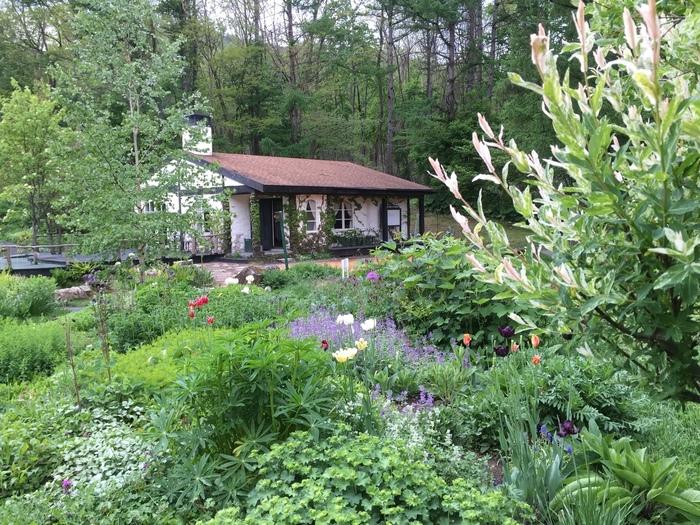 450種類、2万株という沢山の花が迎えてくれる富良野『風のガーデン』は、『北の国から』の 脚本家・倉本聰さんのドラマ『風のガーデン』の舞台になった場所です。ドラマのセットが再現されたグリーンハウスも見学できます。