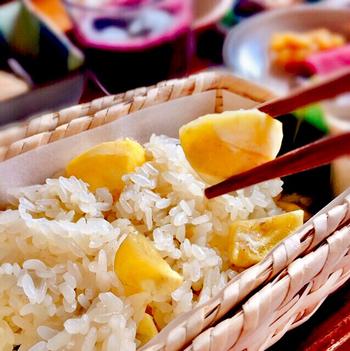 不動の人気を誇る竹風堂の「栗おこわ」。昭和47年創製以来、多くの方に愛され続けています。厳選した栗をたっぷりと混ぜ込んで炊きあげており、ホクホクな栗とふっくらもち米が絶妙な一品!栗おこわ専用の自然な甘さで蜜煮された大きな栗がごろごろ入っています。