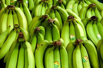 青いバナナはレジスタントスターチという成分が豊富に含まれていて、便秘解消効果が高いそうです。糖分が脂肪に変わるのを防いでくれるのでダイエット中の方にも特におすすめ。  ちなみに生食用バナナは青くても食べられますが、青いまま加熱して使う料理用バナナは生食できないので注意が必要です。
