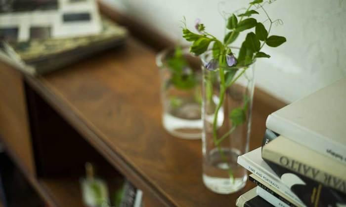 植物は心を和ませる力があります。育てるという行為もまた、豊かな気持ちを育んでくれるでしょう。家にあるグラスに一輪の花を飾るだけでも、ぐっと気分が豊かになります。