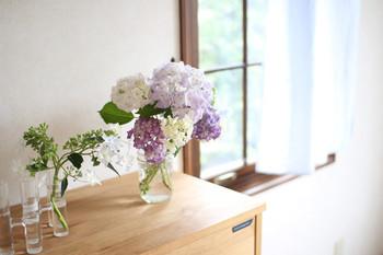 色とりどりのあじさいはボリューム感もあって、窓辺によく似合うお花です。お花を飾るとお花が見える空間そのものをきれいにしようという気持ちが働きます。