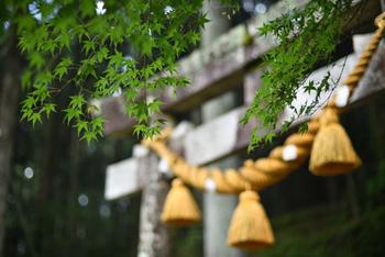 根道神社は、板取川に沿って走る国道256号線から少し東に入ったところにあります。岐阜市からもそれほど遠くないので、ちょっとしたお出かけにいいですね。