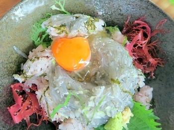 しらす丼の上にのせられている卵は、神奈川県伊勢原市の直売所で販売されている「寿雀卵」。白身がぷっくり、黄身がしっかりの美味しい卵です。【画像は「特上生しらす丼」】