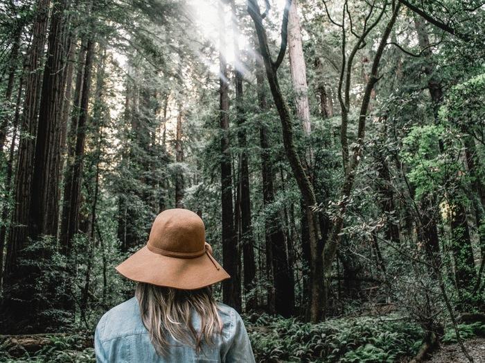 空気の浄化作用でも知られている『マイナスイオン』と『フィトンチッド』。どちらも健康に良いだけでなく、精神を落ち着かせてリラックスさせる効果があります。また、森林浴で鳥のさえずりや緑の美しさなど、自然と直接触れ合うことで癒し効果が高まるそうです。休日はぜひ緑の多い公園や森に出かけて、自然のエナジーをたっぷり吸収しましょう♪