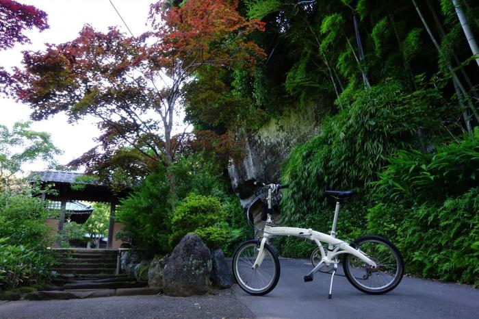 こちらの画像は海蔵寺