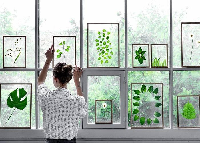 こちらは透明なアクリル板の間にグリーンを閉じ込めて飾ってしまうという斬新なアレンジです。フレームに入ったグリーンたちは、まるでアートのようですね。