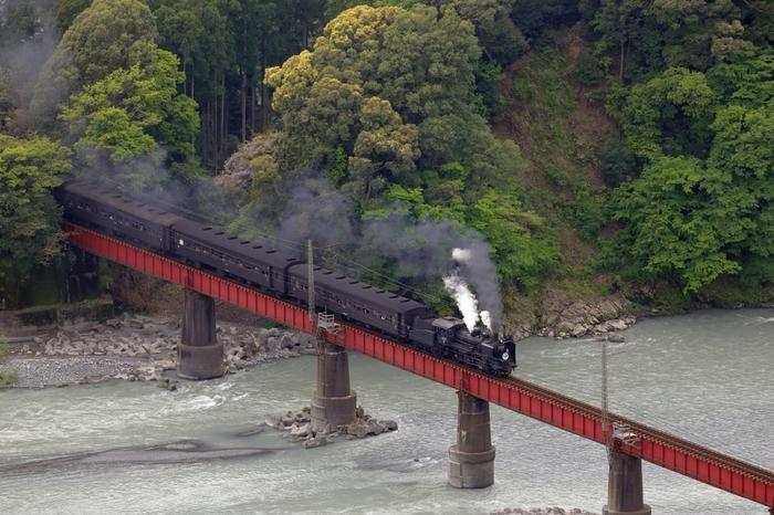 毎年、きかんしゃトーマスとジェームスの汽車が走るフェアを開催。もちろん普通の蒸気機関車も走ります。SLのレトロな世界へタイムスリップしたようなワクワクがそこにはあります。