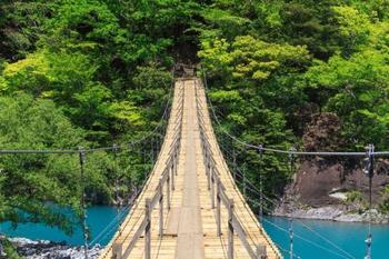 途中からグッと上がる吊り橋。安定感はあるので怖がらずエメラルドの湖をゆっくり望んでくださいね。