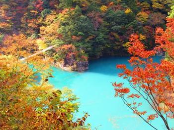 エメラルドグリーンと燃える様な紅葉に圧巻です。湖の上には落ち葉。新緑の季節とはまた違った楽しみ方です。どのアングルも画になりますよ。