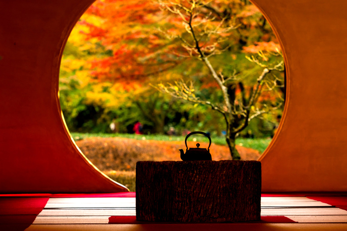 鎌倉には山があり、海があり、歴史があり、何度でも訪れたくなる味わい深い街。実は私も鎌倉に恋して移住してしまった一人です。あなたもぜひ鎌倉に、足を運んでみてくださいね。