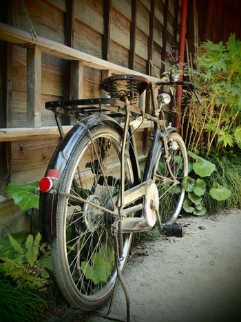 お父さんがサツキとメイを乗せた自転車。