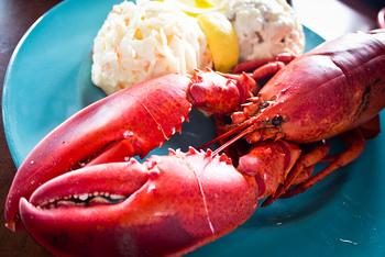 「The lobster」はそのままお店の名前になるのもうなずけるほど、ロブスターが美味しいシーフードレストランです。 1匹でも十分満足できる大きさのロブスターは、身がプリプリで絶品です。他にも皮まで食べられるソフトシェルクラブやシュリンプカクテル、クラムチャウダーなど美味しいメニューがいっぱい! ※画像はイメージです。