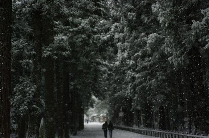 瑞巌寺の参道もあたり一面雪景色。冬の寒い朝、一人でお散歩をしたくなります。 落ち着いた大人の雰囲気を醸し出す松島は、ぜひ大切な人と訪れたくなるスポットです。