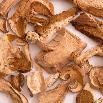 そして二つ目が「ポルチーニ茸」。イタリアではきのこの王様とも呼ばれているもので、ナッツのような芳醇な香りを持っています。人工栽培が難しく、日本で手に入るのは乾燥させた輸入物がほとんどです。