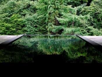絵を切り取ったような緑いっぱいの景色がすばらしい、展望露天風呂です。源泉は、女性用は鉄泉、男性用は食塩泉になっています。絶景を見ながら、リラックスできそうですね。