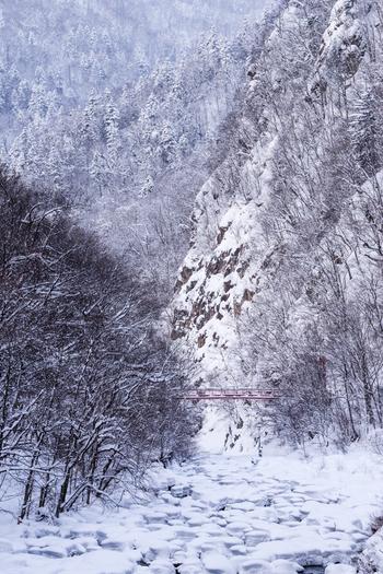 温泉名は慶応2年(1866)、修行僧の美山定山が源泉を発見し、その地区の開貢献した事に由来しています。