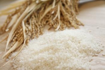 日本のお米を使って作られた米粉の消費は、そのまま国産の米の消費量へ反映され、食料自給率を上げることに繋がっていきます。