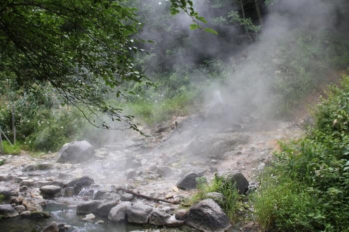 遊歩道のすぐ側からも温泉がボコボコと湧いており、立ち上る蒸気から熱ささえ感じるほどです。