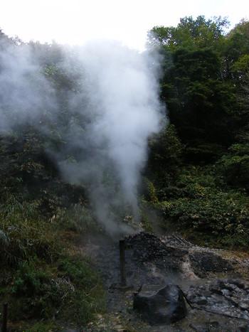 遊歩道の途中には、間欠泉の小さいものも見られます。「紫地獄」と名付けられたこの場所からは、少ないながらも常にお湯が吹き出しています。