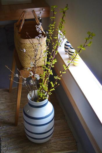 鉢植えではなくても直置きしたいグリーンといえば、やはり枝ものです。桜や梅などの日本らしさを表現できるお花は、季節を感じることができるので、折々で取り入れていきたいお花です。これくらい大きな安定した花器があると枝ものをどんどん飾りたくなります。
