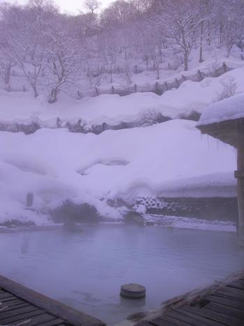 「鶴の湯温泉」には女性専用露天風呂もあり、こちらも広々としています。山が迫ってくるような景色を味わえますよ。