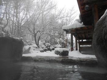 湯の効能・渓谷と山並みが織り成す景色。共に素晴らしいと有名な「水上温泉」。雪を被った林や渓谷、山肌。景色を眺めながら入浴する一時は、至福の時間。  画像は「水上温泉」の「松乃井」。露天風呂は3つありますが、いずれも混浴ではありません。