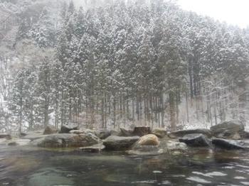雪化粧した木々の梢が息を飲むほどに美しい、谷川温泉「水上山荘」の露天風呂。