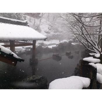 舞い散る雪の中で、天然温泉に浸かりたいのなら、大露天風呂がある「宝川温泉」がオススメ。