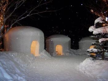 「湯西川温泉」が知られるのは、冬に開催される「湯西川温泉かまくら祭」。  大小様々のかまくらと、温かな灯りが織り成す光景は、実に幻想的。祭の開催期間は、その素敵な景色を眺めに観光客が足を運びます。
