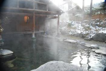 水上温泉郷の最奥に位置する「湯の小屋温泉」。  写真は「たぬきのお宿 洞元荘」の混浴露天風呂。この他にも女性用の露天風呂もあります。  その名のとおり、夜になるとたぬきやキツネを見ることができる見学ルームも。