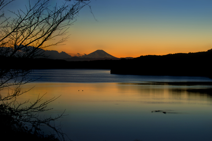 木と湖、富士山のシルエットが美しい一枚です。 綺麗に色づいた空と湖に癒されます。