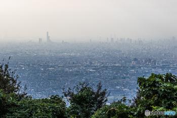 生駒山と信貴山(しぎさん)の尾根沿いを結ぶ、<信貴生駒スカイライン>は、東西に奈良県と大阪平野を見下ろすことのできる絶好のポイント。青空の下の景色も絶景です。展望駐車場があるので、夜景が美しさを増す真冬でも車から下りずに眺めることが出来ますよ。