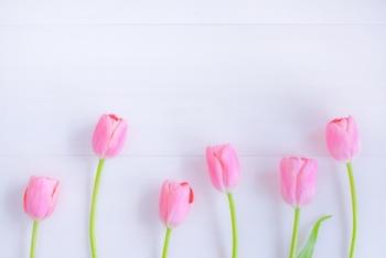 もうすぐ春ですね♪清々しい雰囲気を身に纏って。大人が着たい『白』のコーディネート集