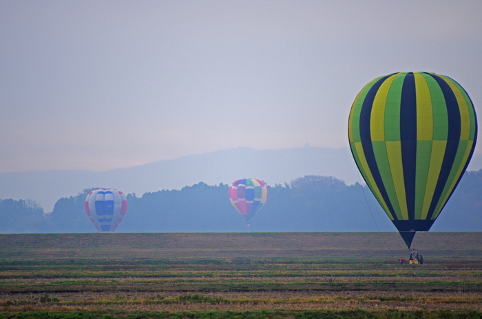 もともと、岩出山から飛び立つと長く遠くに飛べることからここで始まったフェスティバル。民間機の航路が少なく飛びやすいという点でも岩出山はバルーンに最適な場所なのです。広々とした田んぼの上を飛ぶカラフルなバルーンがとても幻想的です。