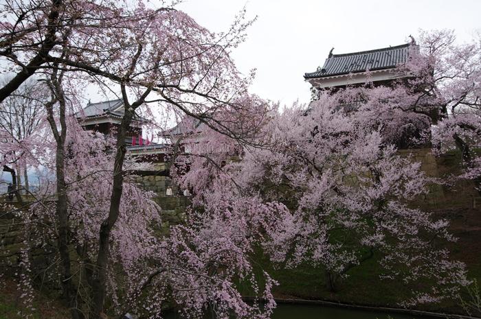 「上田」の中心「上田城址公園」。「上田城」は、真田昌幸によって安土桃山時代に築城された名城。