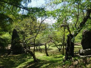 「だんご山」と地元に親しまれている「本丸跡」。緑深く、真夏でも涼しい場所です。